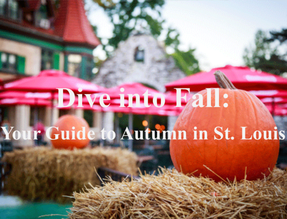 Dive into Fall: Your Guide to Autumn in St. Louis