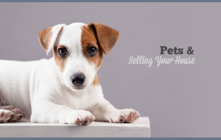 Pets and Selling Your Home